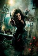 Гарри Поттер и Дары Смерти: Часть первая / Harry Potter and the Deathly Hallows: Part 1 (Уотсон, Гринт, Рэдклифф, 2010) Cee7d1b21d67t