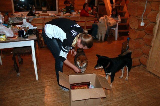 Недельные курсы повышения квалификации для собакообожак :-) Приглашаем всех!!! - Страница 3 295b47dd9909