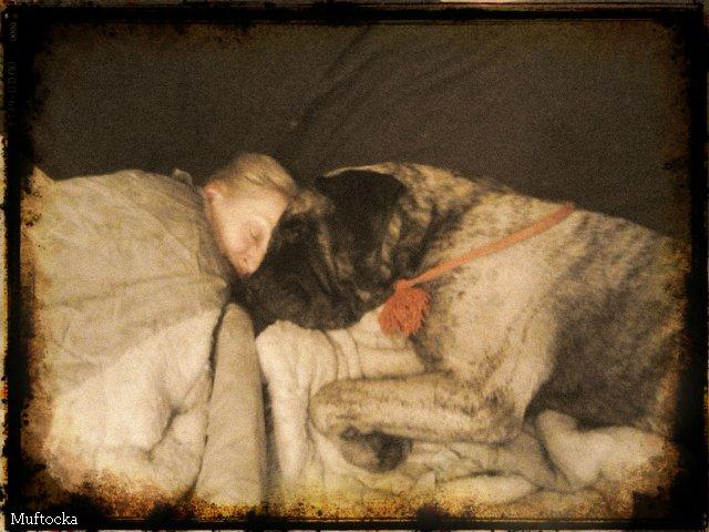 Наши собаки, друзья и гости, кот Мензурка - Страница 32 56ddaa25f70c