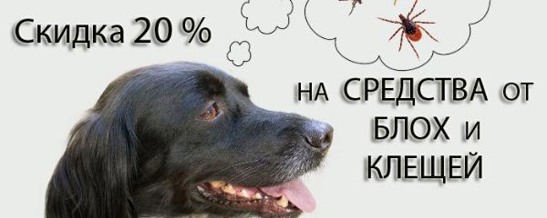 Интернет-зоомагазин Pet Gear - Страница 9 7feef692df59