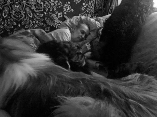 Наши собаки, друзья и гости, кот Мензурка - Страница 30 6fb305115029