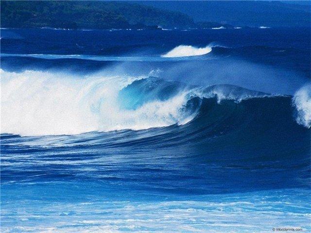 Мир моря