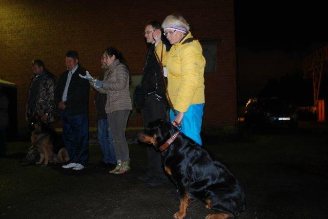 Ночные испытания собак в Латвии A2af2b63390d