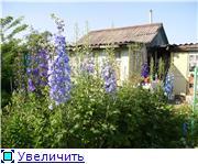 Лето в наших садах - Страница 4 5ae2bc12b5ebt