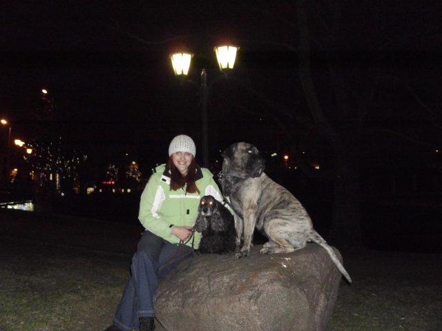 Собаки Татьяны Моисеенковой, кот Мензурка - Страница 3 Bb7198124647
