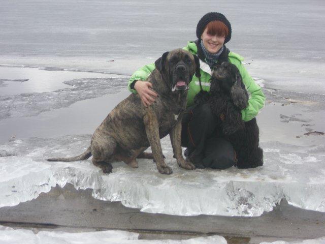 Собаки Татьяны Моисеенковой, кот Мензурка - Страница 3 Fce78ee3cdc9