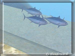 Все для аквариумов, водоемов 8ecb9a3eaf8f