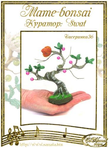 """Галерея """"Mame-bonsai"""" 575299403ba4t"""