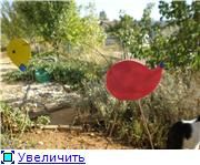 Идеи для сада. Садовый интерьер. Bc076d3dc2a3t