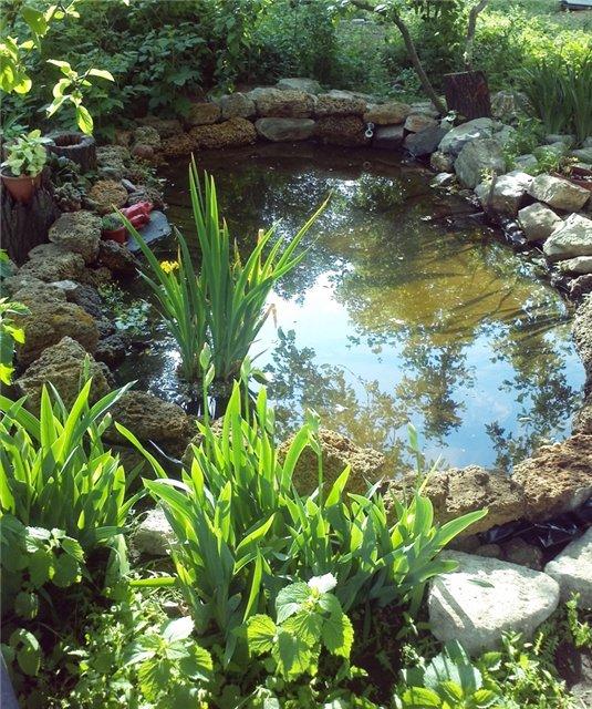 Ландшафтный дизайн... Сделаем свой сад самым красивым! - Страница 6 A193215260cf