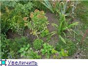ОЧИТКИ Cd2faba6201at