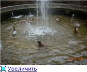 """Пригороды - """"жемчужное ожерелье"""" Санкт-Петербурга 7ec75f610b5ft"""