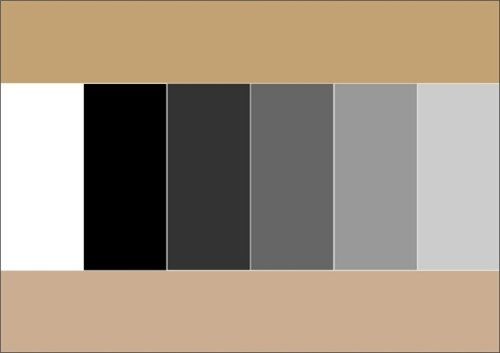 Как правильно сочетать цвета в одежде 9fcf6f0f51e4