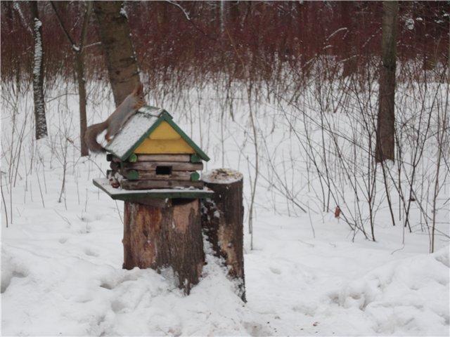 Зимняя сказка на наших фотографиях - Страница 4 33c9ece6fb31