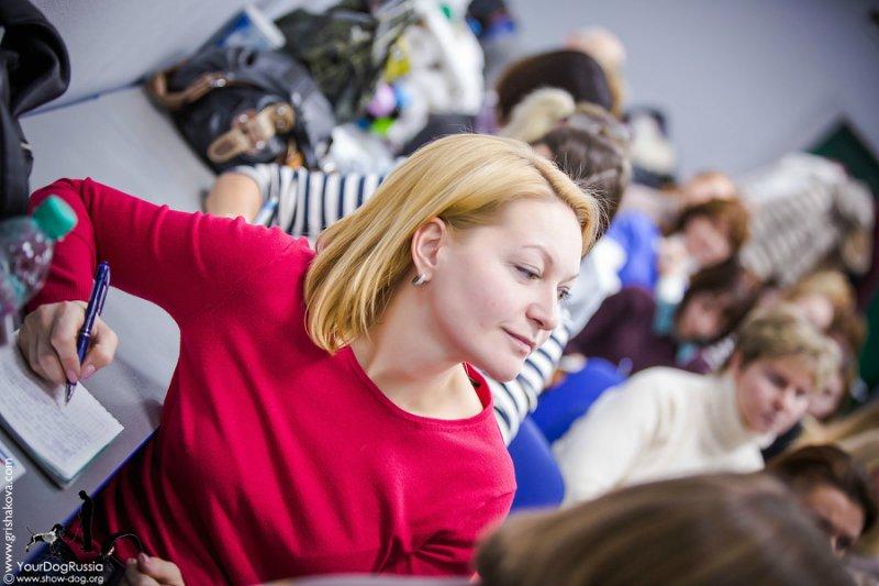 Джерард О'Ши - семинары по хендлингу и ринговой дрессировке в России - Страница 2 61053a4bb162