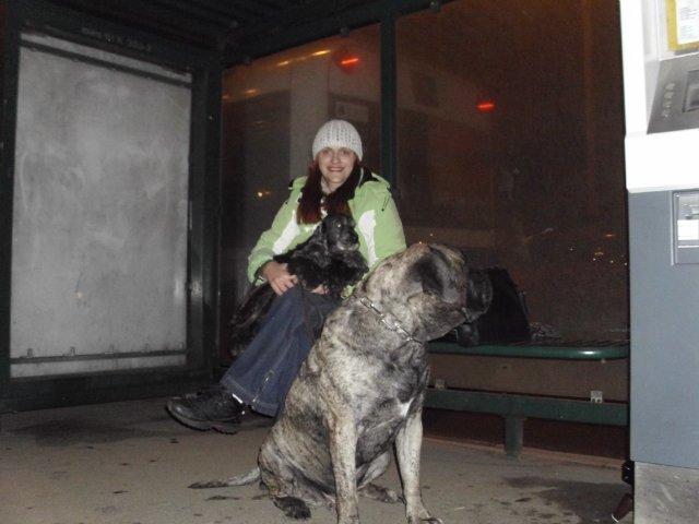 Собаки Татьяны Моисеенковой, кот Мензурка - Страница 3 Cb379f0944ac