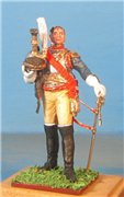 VID soldiers - Napoleonic french army sets 50e0df23db2ft