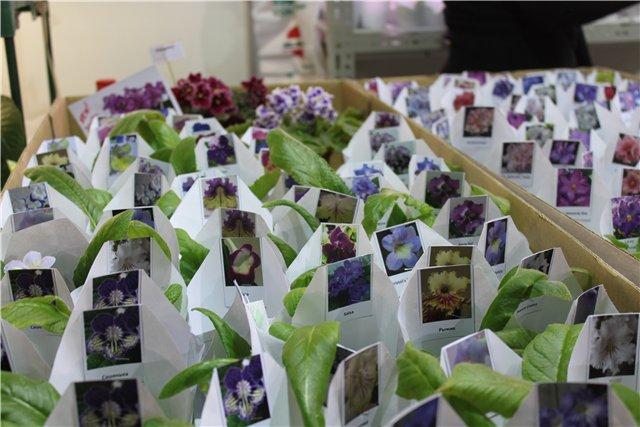 XIX Международная выставка Ландшафт и Приусадебное хозяйство-2012 70e76a5cbcf0