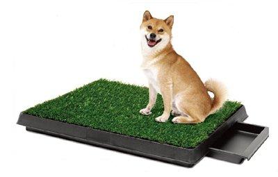 Интернет-зоомагазин Red Dog: только качественные товары для  - Страница 5 A2b306c9b338