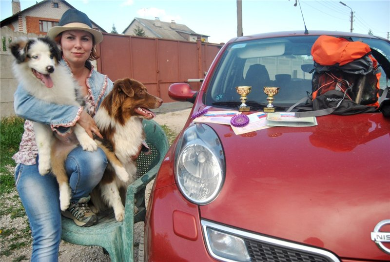 Мои аусси - Зефир и Мисси.....и немного их тусовки - джек рассел, хаски, маламут и акита... 2c85e2a6c36a