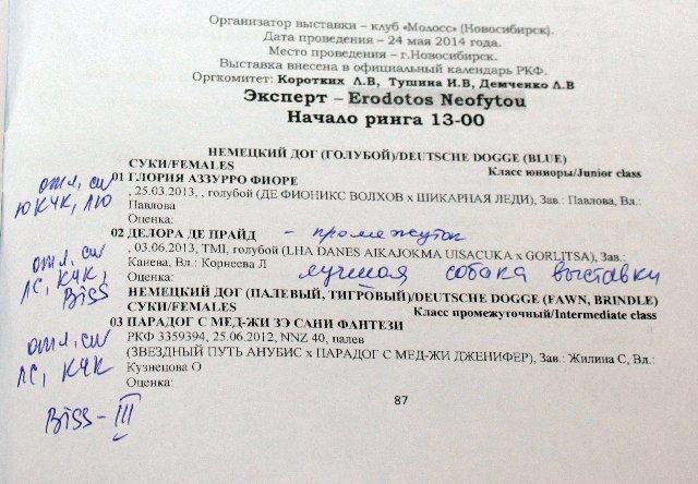МОНО (КЧК) + САС в Новосибирске Dd40a76dc0e9