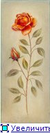 Цветы, букеты 62a276d19afdt