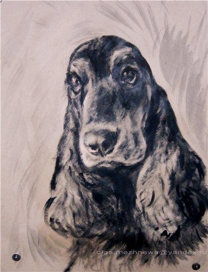 Рисую собак по фото - Страница 6 Ba4e9313222b