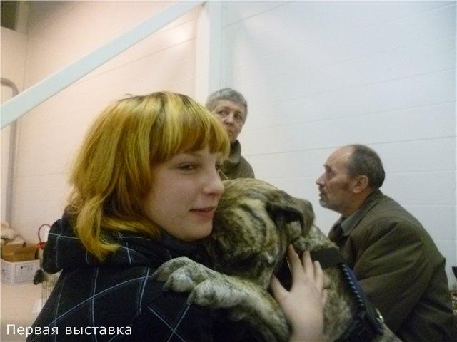 """Фотографии """"Бульмастиф и дети"""" Dc85e1e968e4"""