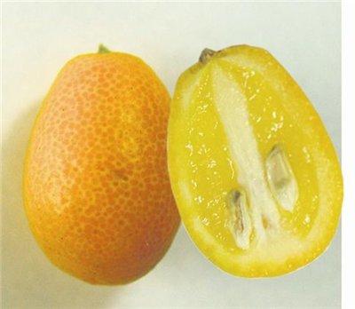 Экзотические фрукты и с чем их едят 9916d3970d74
