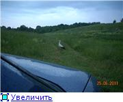 Птичий двор 0b18174d39e4t