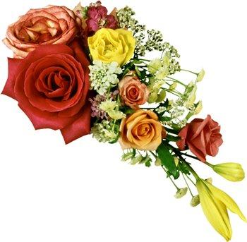 Поздравляем с Днем Рождения Юлию (YStahneva) 82de5548cc64t