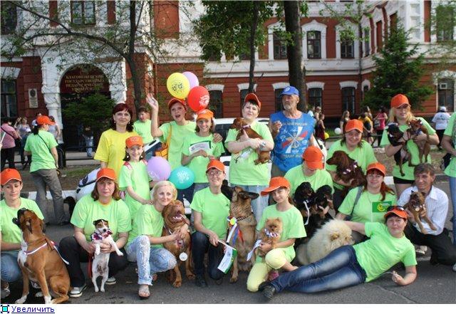 Клуб служебного и любительского собаководства, г.Благовещенск B4b476d1e127t