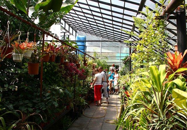 Экскурсия по Ботаническому Саду Ba6f02f18652