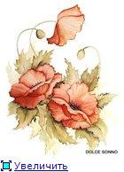 Цветы, букеты B114b8a850d1t