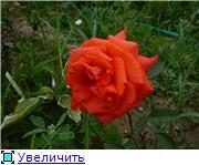 Specially for Karkela )))    Тестирование сербок и проч. 68e95e37ea08t