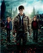 Гарри Поттер и Дары Смерти: Часть первая / Harry Potter and the Deathly Hallows: Part 1 (Уотсон, Гринт, Рэдклифф, 2010) 373558352c33t