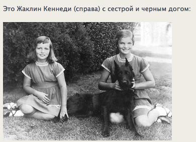 """Доги и """"светское""""общество Ba8012144efd"""