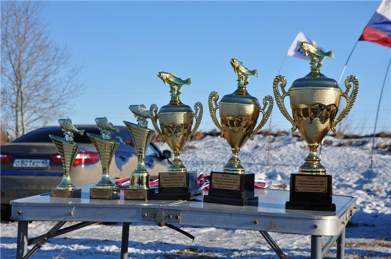 Чемпионат Курганской области по ловле на мормышку со льда. 28 марта 2015 года. 9ce52ec64b4f