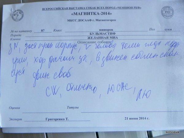 21 июня г.Магнитогорск Чемпионат РКФ Dce77c7f0fae