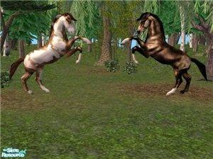 Животные (скульптуры) 2858ff2153f1