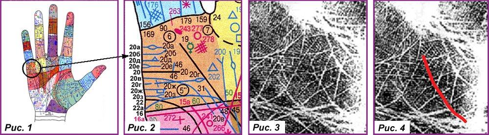 Основные, второстепенные, редкие линии и знаки A9078d844db5
