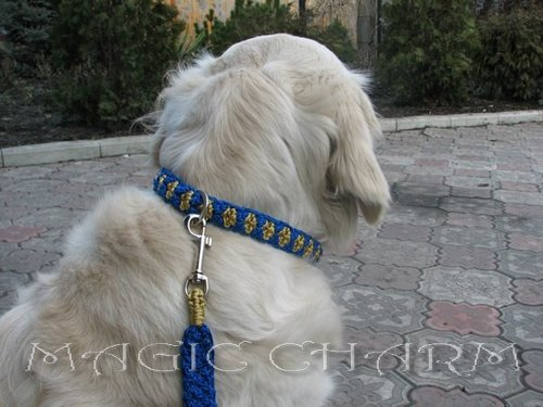 MAGIC CHARM - обереги, ошейники, украшения, ринговки и другие аксессуары для  собак и кошек. 9a10c5c8d6dc