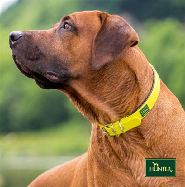 Интернет-магазин Red Dog- только качественные товары для собак! Ce61726aa54c