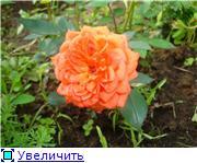 Specially for Karkela )))    Тестирование сербок и проч. - Страница 3 5f33752728bet
