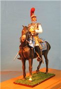 VID soldiers - Napoleonic french army sets C44a527e46cft