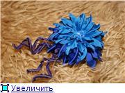 Астры и хризантемы 972a7ad378d1t