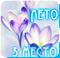 Голосование - Летний комплектик 418a2e84f246