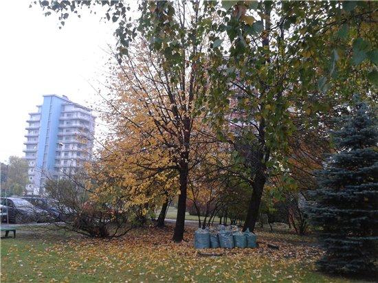Осень, осень ... как ты хороша...( наше фотонастроение) - Страница 5 C6708b4b9240