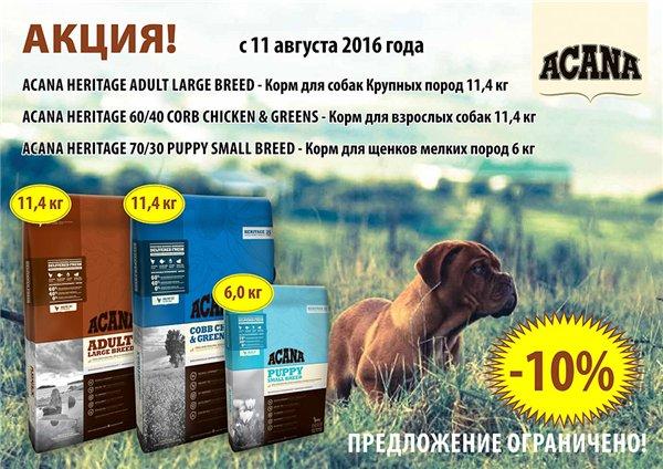 Интернет-магазин Red Dog- только качественные товары для собак! - Страница 4 9dc6309d4e48