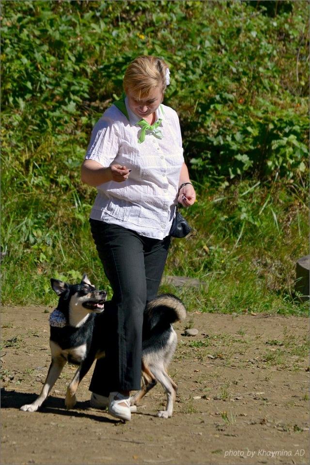 Танцы с собаками - Страница 3 0791e47f28ce